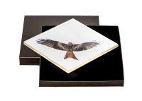 Red Kite Boxed Tile FB_13_BXTILE